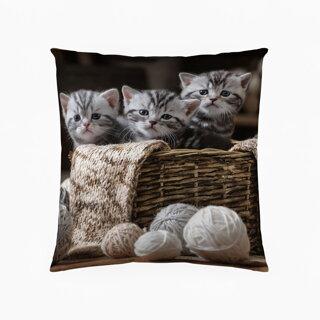 Dekoračný vankúš Kitten Wool | Áčko.sk